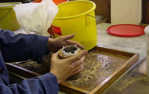 Krudtet er pakket ind i papir, der er havreskaller udenom for at stabilisere.
