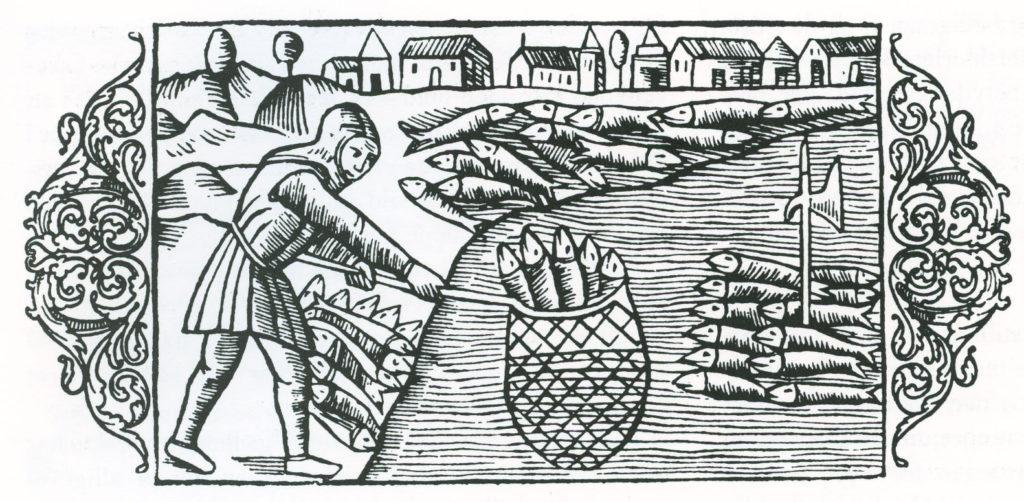 sildefiskeri-fra-olaus-magnusl