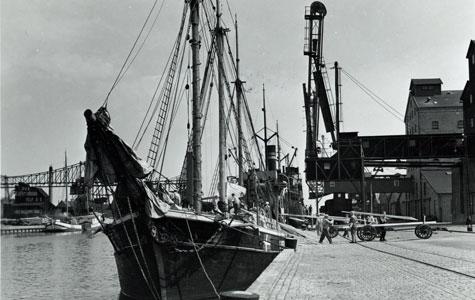 Losning af træ i Køge Havn.