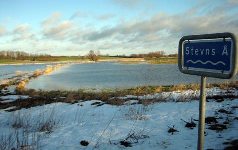 Stevns Å er gået over sine bredder ved Hellested.