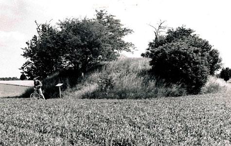 Elverhøj ca 1980