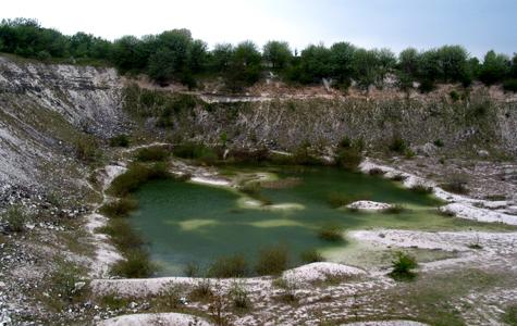 Holtug i dag. Der brydes ikke længere kridt og kalk. Bruddet er rekreativt, dyr og planter er fredede.