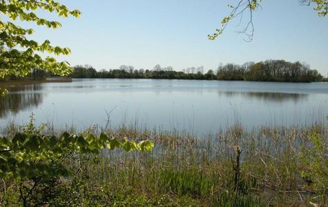 Møllesøen om foråret