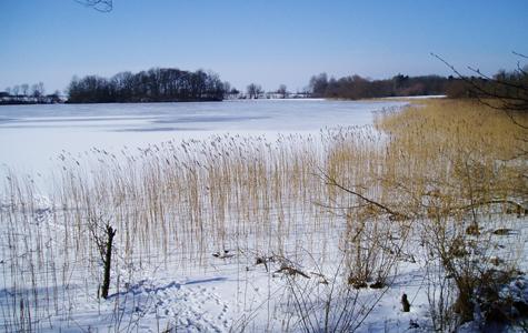 Møllesøen om vinteren