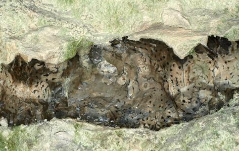 Flintebånd i kalk - I kalken ses sorte striber af flint. Flinten er meget hård og stabil, mens kalken er fleksibel. Tilsammen bliver kalk og flint et meget stærkt byggemateriale, der kan sammenlignes med jern og beton.